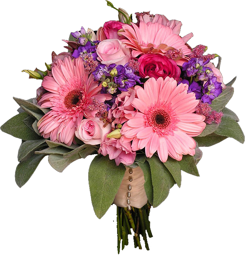 http://www.inueco.ru/userfiles/flowers_forNA.jpg